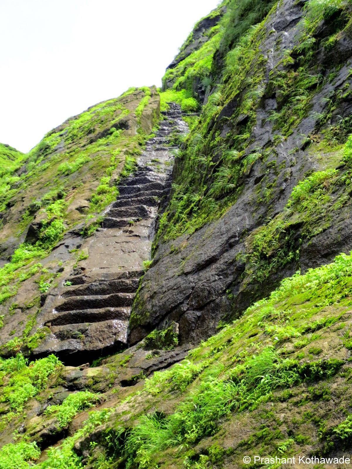 Nimgiri_Steps